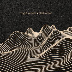 Trigg & Gusset - Black Ocean